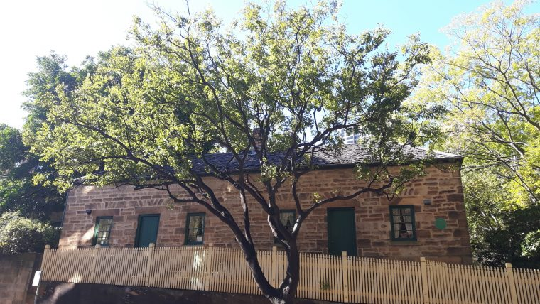 Glover Cottages, home of the Society of Australian Genealogists